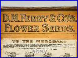 RARE Victorian D. M. Ferry & Co Flower Seed Carved Oak Box Store Display